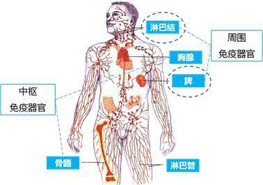 运动可以治疗银屑病?不注意最后这2点,运动再多都没用